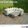 Ротанг PE & мебель алюминия, напольная софа сада (TG-6005)