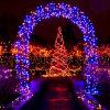 Indicatore luminoso della stringa dei 100 LED Christams per l'arco domestico Deco
