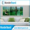 O painel popular o mais novo da foto do Sublimation de Microtec HD