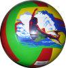 Voleibol da borracha dos esportes