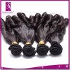 最初の堅の販売の製品巻き毛の100% 12  Funmiのバージンの毛