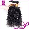 黒人女性の最もよい製品のねじれた巻き毛のインドのRemyの毛の織り方