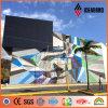 新しい装飾材料PVDF ACPの外壁のクラッディング(AF-411)