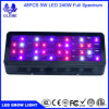 СИД растет электрическая лампочка, Lampat растет свет завода для парника органического 240W 3-Band Hydropoics