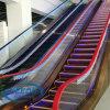 Escalera móvil de interior casera del elevador del pasajero de Deeoo