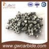 De Matrijzen van de Tekening van het Carbide van het wolfram met Hardheid
