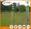 Sureflute Rigid Guards / Plant Tree Guards