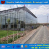 Hydroponicシステムが付いている中国の工場供給のVenloのガラス温室