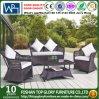 Diseño al aire libre del sofá del jardín de los muebles para cualquier estación de los muebles de Foshan (TG-1507)