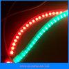 LED 밧줄 빛