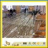 Yellow Polished Tara Onyx Stone Slabs para Floor (YQW-OS1006)