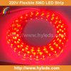 고성능 유연한 SMD LED 지구 빛 (HY-HV5050-48-R)