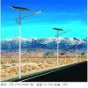 CCCのセリウムISO (JS-A201510100)の220V 230 240V 100W 10m LEDライト