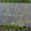 Diamond Clear Embossed Polycarbonate PC Sheet