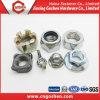 Noix DIN928 de soudure de grand dos d'acier inoxydable de qualité