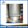 Steel di acciaio inossidabile 304 Flexible Braided Hose Made in Cina
