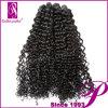 100つのRemyのインドに毛の拡張編むこと(PE-INKC-013)