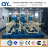 CNG26によってスキッド取付けられるLcng CNGの液化天然ガスの組合せの給油所