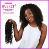 Grand Quantity en stock Cheap Price pour Natural Black Color Hair Market Virgin Peruvian Water Wave Hair