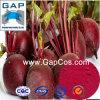 製造業者は赤いBeetrootの粉を供給する