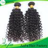 広州の毛の工場供給、品質のインドのRemyの人間の織り方の毛