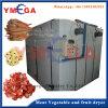 Déshydrateur à séchage rapide de fruits et légumes