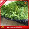 De Leverancier die van China Kunstmatig Gras met het Beste Verkopen modelleren