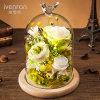 Bewaarde Bloem in Glas voor de Gift van de Verjaardag van de Valentijnskaart
