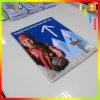 Preiswerte im Freien farbenreiche Drucken-Vinylhochleistungsfahne