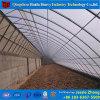Estufas plásticas da produção vegetal do túnel feitas em China