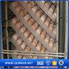 販売されるHatchinhingの家禽の卵のための定温器の卵