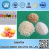 Gelatine granuliert