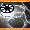 Color multi LED Rope Light/LED Rope (5 alambres)