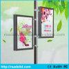 Signage d'étalage de tissu de cadre d'éclairage LED de Frameless de textile