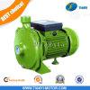 bomba de água elétrica 0.5HP da série de Scm da bomba 1HP centrífuga