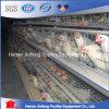 Cage de batterie automatique de poulet de matériel de volaille à vendre