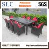 Rota de los muebles del jardín de la buena calidad (SC-B8849-BB)