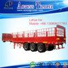 Fabricante 3 Eixo Van Semi Reboque de China com vário transporte