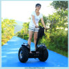 Automatic Fuse를 가진 Eco Friendly Auto Balancing Electric Scooter