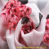 Gewebe zusammengesetztes Silk Chiffon- Printsd Gewebe 100% des Polyester-15D+15D*50d