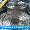 Rete metallica galvanizzata saldata del ferro