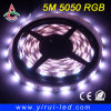 3528 & 5050 LED Strip