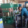 Heißes Sale Rubber Vulcanizing Machine mit CER Certification