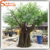 2015년 광저우 장식적인 인공적인 Ficus 벵골 보리수 플랜트 나무