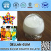 Food Additiveの薬学Bp Low Acyl Gellan Gum