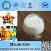 Point d'ébullition Low Acyl Gellan Gum de pharmacie en additif alimentaire