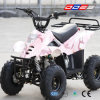 Mini ATV Quad para Kids (LZ110-2)