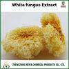 Extracto del polvo del hongo blanco con los polisacáridos 10%-30%