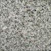 Granit-Fußboden-Fliesen/Wand deckt /Slabs mit Ziegeln