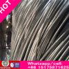 Fil galvanisé plongé chaud riche de Bwg33-0.20mm pour le câble fabriqué en Chine